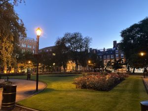 The park square at night with street lights, trees, and flowers