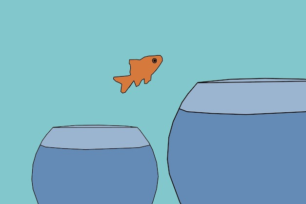 Fish facing fears by jumping to a bigger fish tank